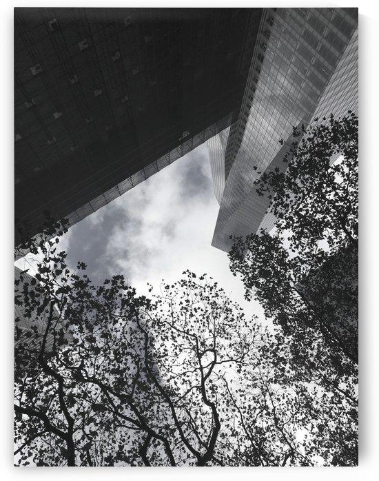 NYC Visual Elements by Miels El Nucleus