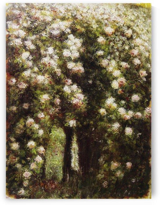 Garden 8 by Artstudio Merin