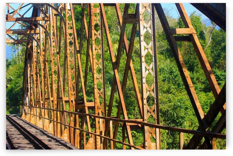 Bridge - XL by Carlos Wood