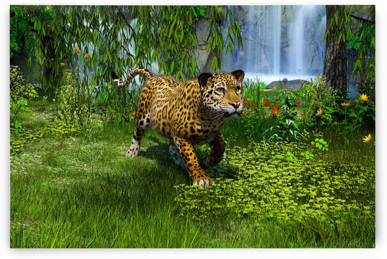 BigCat by William D Panos Sr