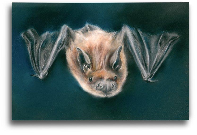 Bat Dark Nighttime Flier by MM Anderson