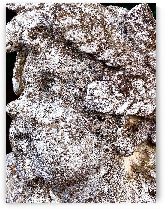 Cherub with Patina by BotanicalArt ca