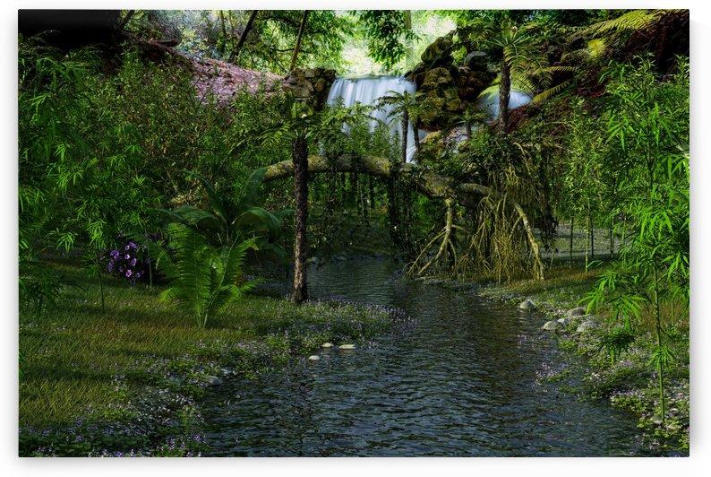 JungleCreek by William D Panos Sr