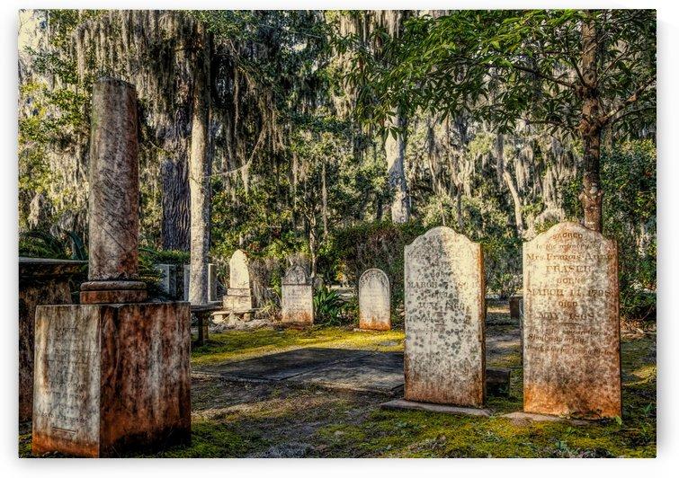 Nineteenth Century Tombstones by Darryl Brooks