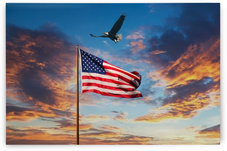 American Flag on Old Flagpole at Sunset with Eagle by Darryl Brooks