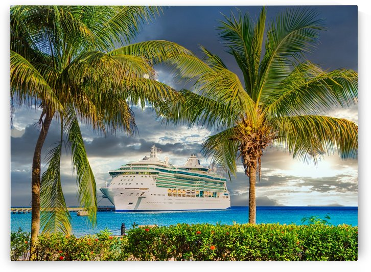 Cruise Ship Between Palm Trees at Sunset by Darryl Brooks