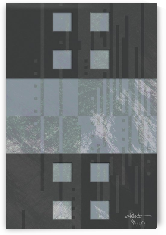 Framed Heather Noise H 2x3 by Veratis Editions