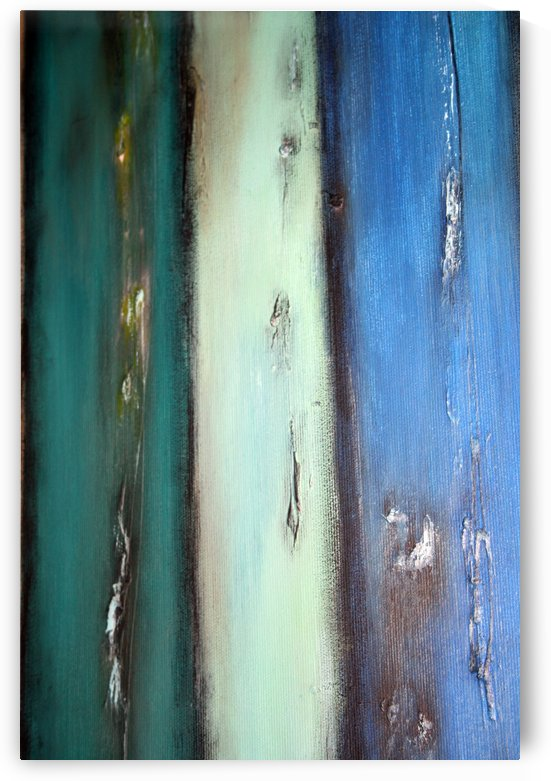 Vintage wooden fence 3 by Iulia Paun ART Gallery