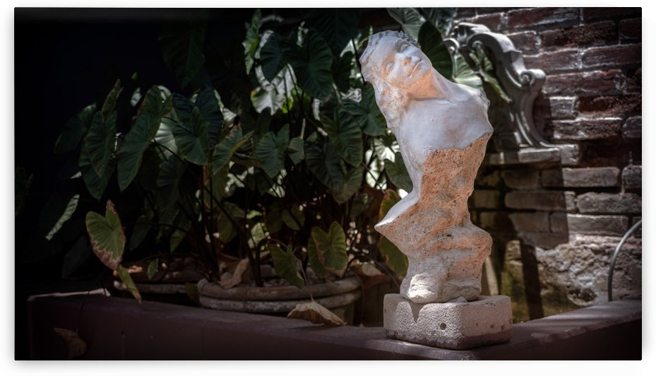 Bust at the Hotel California by Nicholas