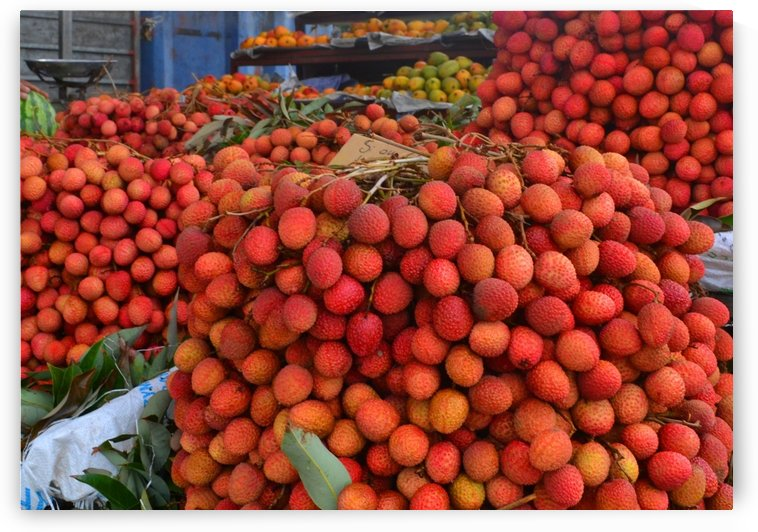 Tropical lychee fruits by Elena Ska