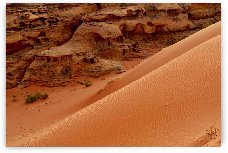 Dune in the desert by Elena Ska