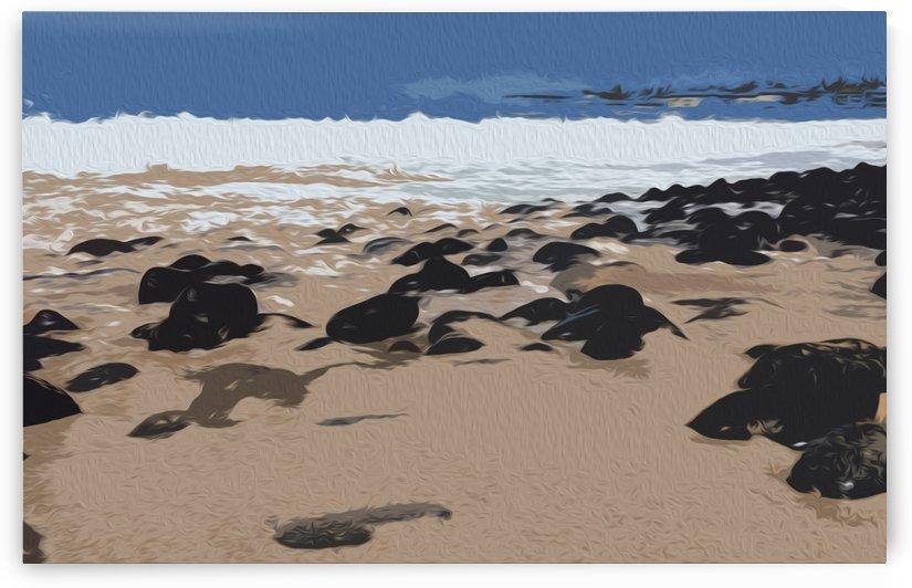 Beach Rocks and Sand by David Pinter