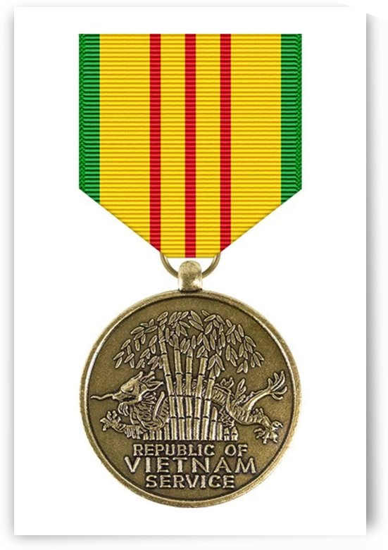 Vietnam Service Medal by ArmyFacts com