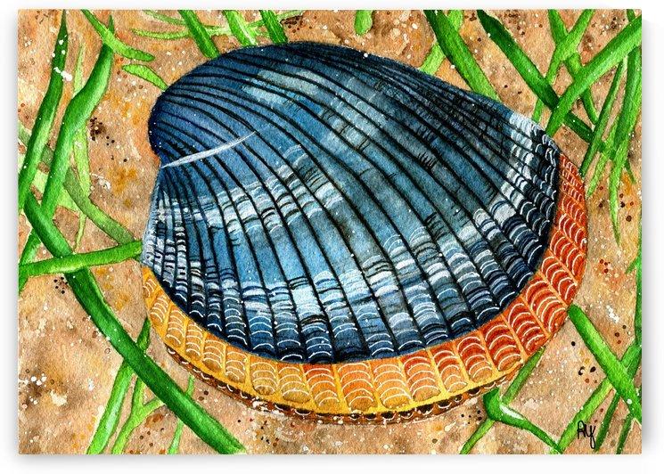 Clamup by Drip Drop Watercolors