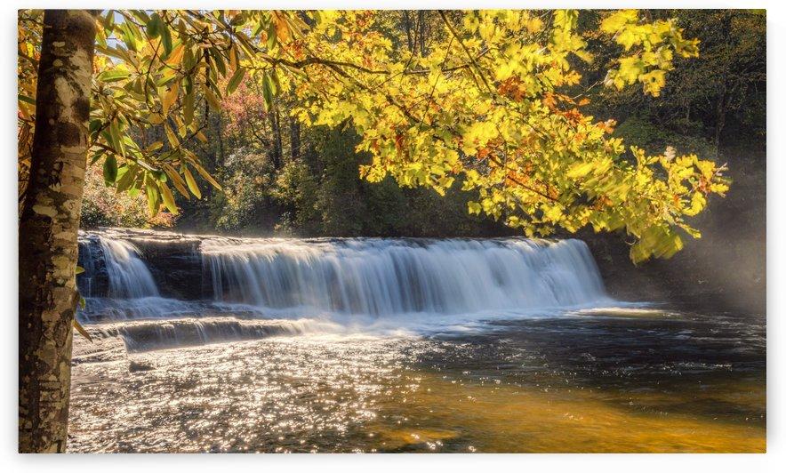 Hooker Falls NC  by Diane Lynn