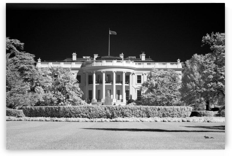 White House - Washington DC by James Hilsdon