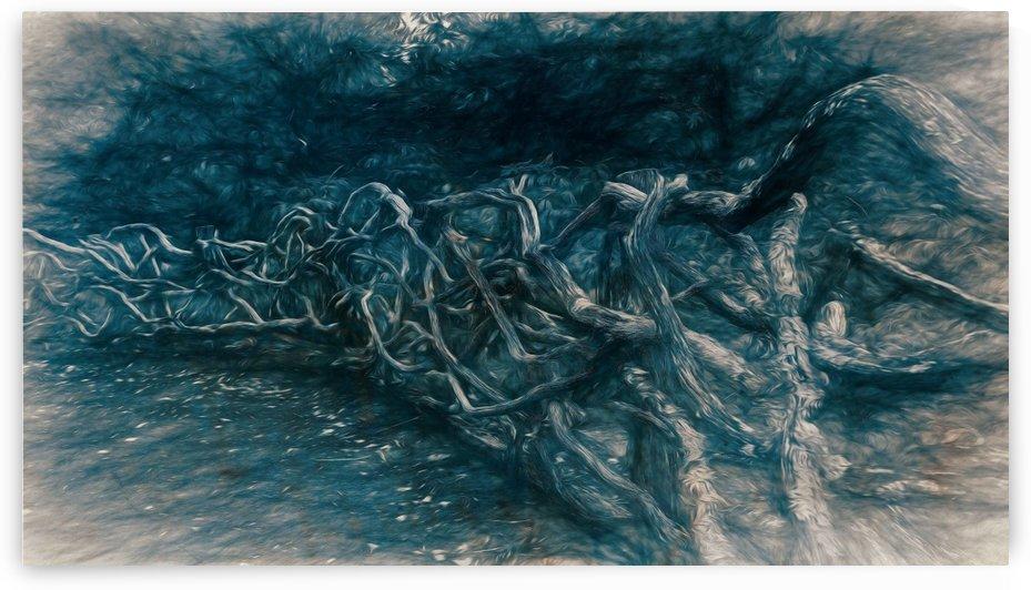 Blue Fence by Nicholas