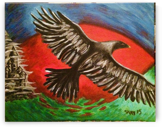 Bird Eye View by Shay Morrow