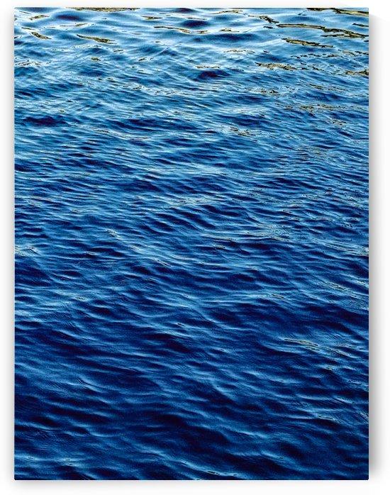 Wild waters  by TazPix