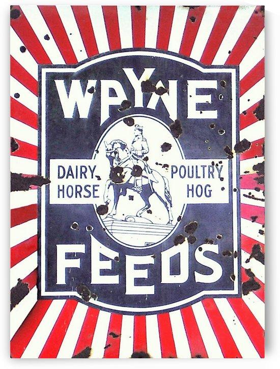 Wayne Feeds Sign by David Pinter