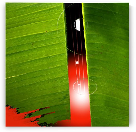 Banana Leaf with Red Sun by BotanicalArt ca