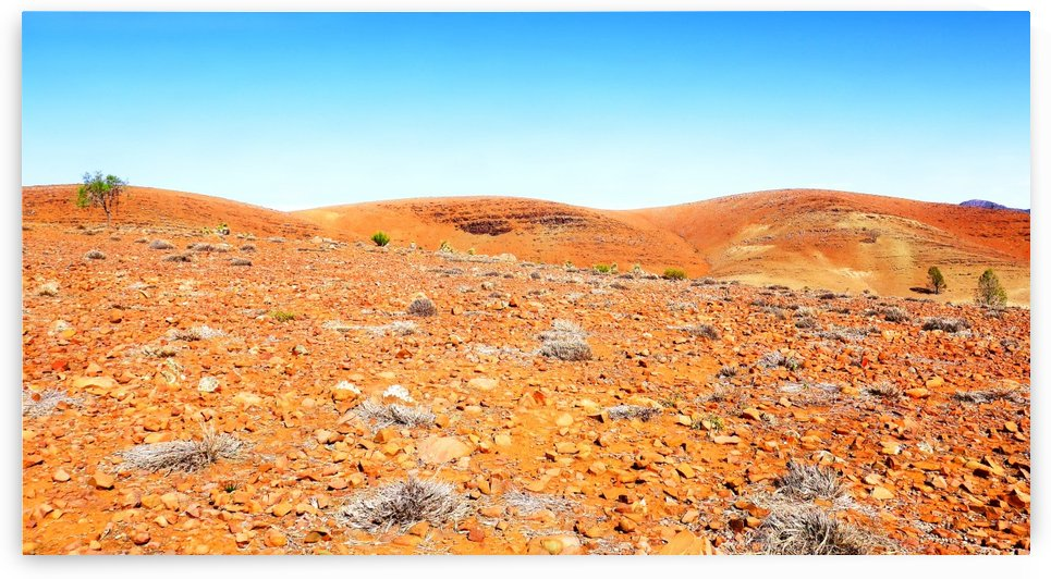 Rocky Landscape of the Flinders Ranges by Lexa Harpell