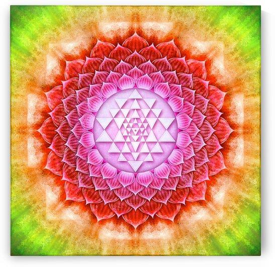 Sri Yantra Lotus by Dirk Czarnota