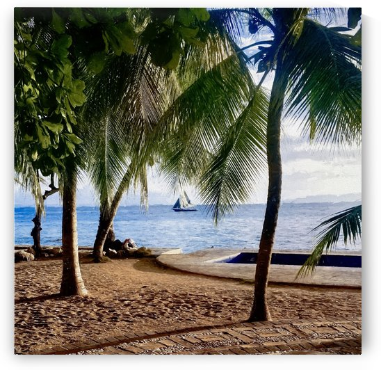 Sailboat And Palms by Jacqueline Sleter