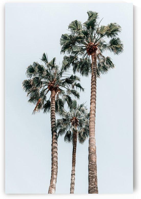 Palm Trees Miami Summer Vibes Minimalist Art Print Minimal Pastel Colored Coconut Trees Summer by Radu Bercan