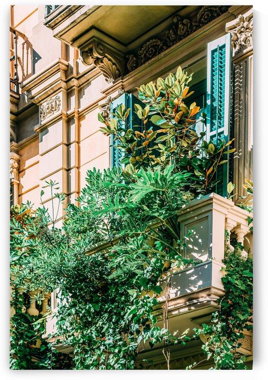 Barcelona City Print Green Lush Vegetation Balcony Vintage Facade Building Architecture by Radu Bercan