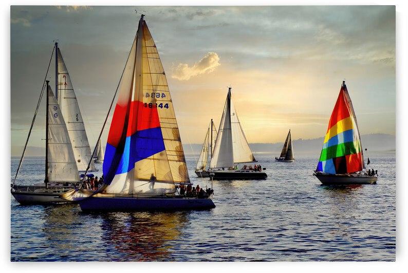 Thursday Night Sail ... Seatle Washington by Fred J Bivetto