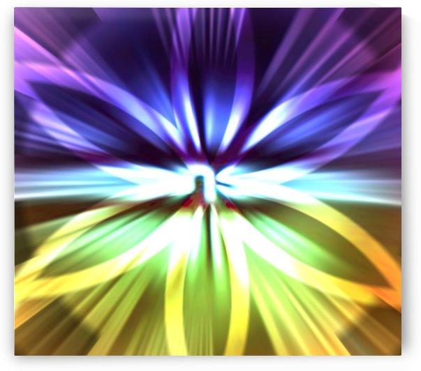 Rainbow 1 by Jenn Rosner