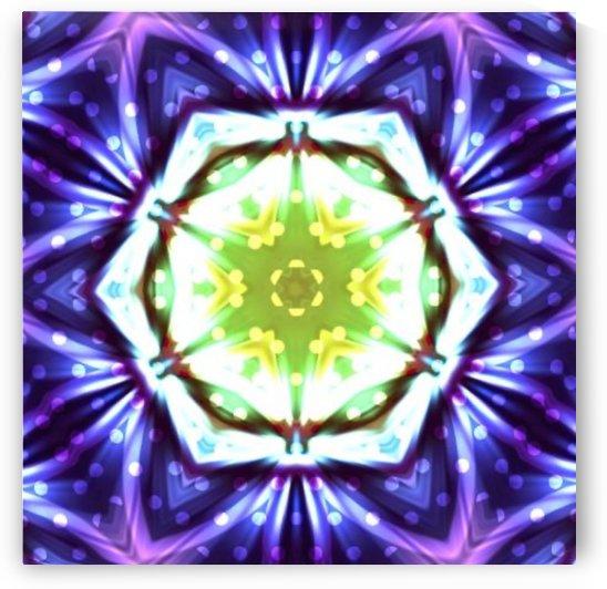 WInter Mandala by Jenn Rosner