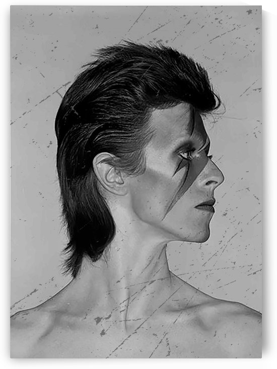 davidbowie5 by mimabags