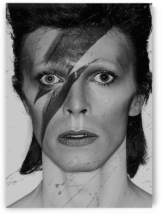 davidbowie14 by mimabags