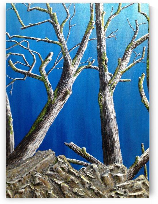 Crag Ridge by Ginny Wilkie