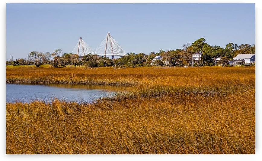 View of Arthur Ravenel Jr. Bridge from Shem Creek -2019 by Marco Menezes