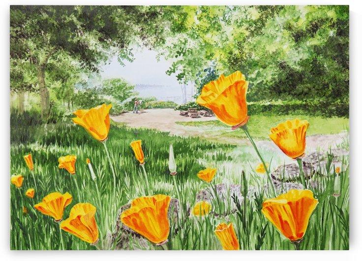 California Poppies by Irina Sztukowski