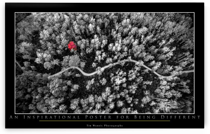 An Inspirational Poster by Tim Warris Photography