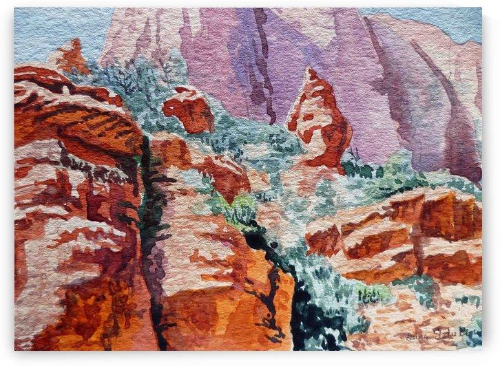 Sedona Arizona Rocky Canyon by Irina Sztukowski