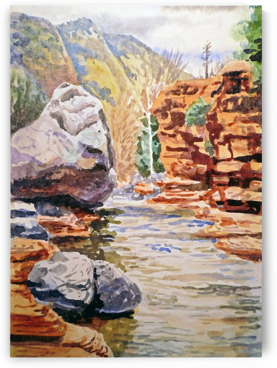 Sedona Arizona Slide Creek by Irina Sztukowski