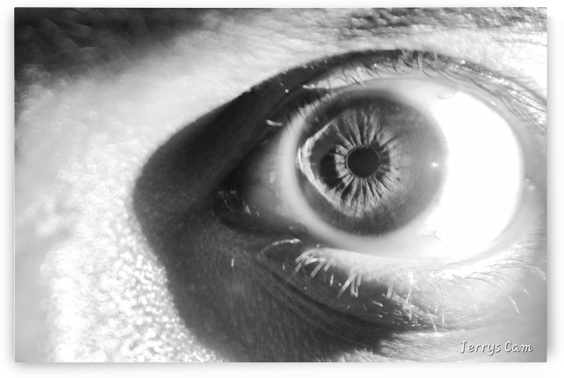 Human Eye Ball by Jerrys Studio