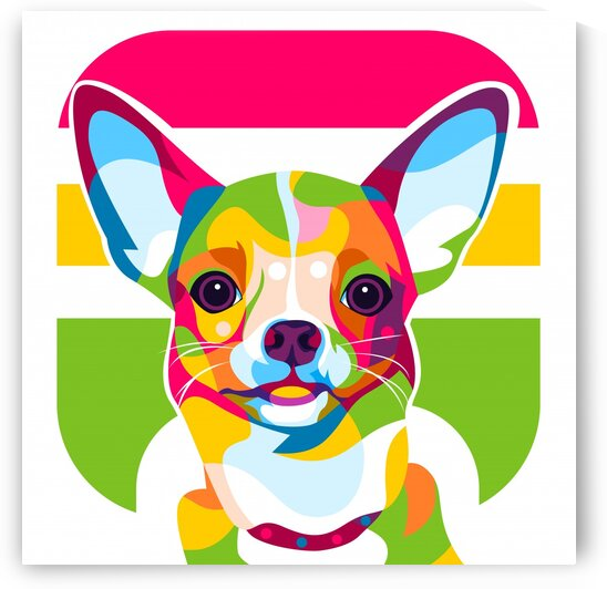 Colorful Chihuahua Face by wpaprint