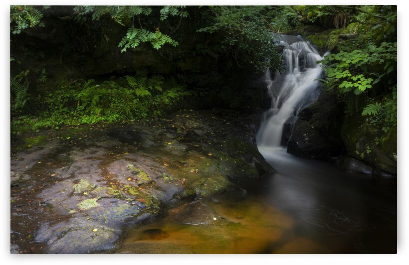 The colours of Blaen y Glyn  by Leighton Collins