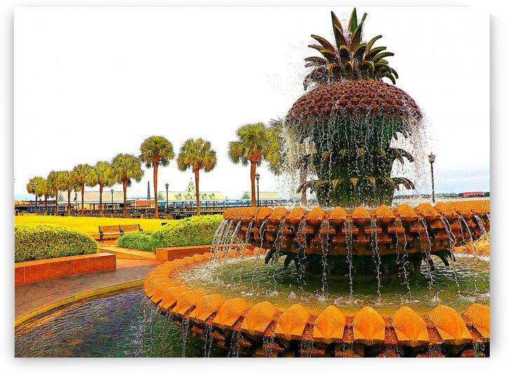 Pineapple Fountain - Charleston SC by AluminousPrints