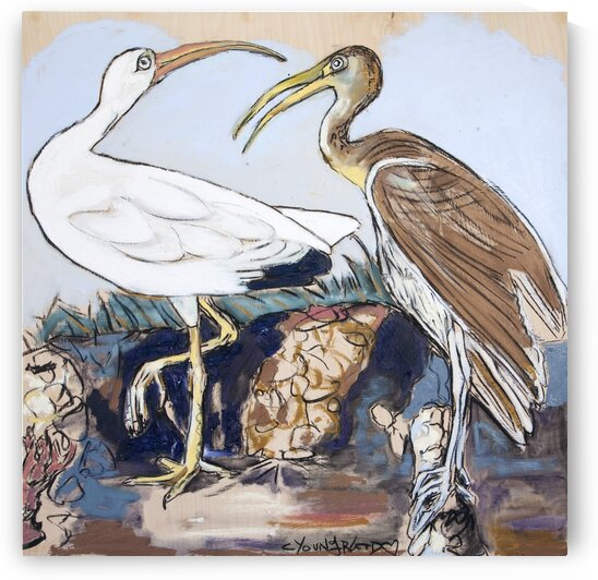 Louisiana White Ibis and Friend Study on Wood by Caroline Youngblood