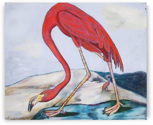 Louisiana Flamingo   by Caroline Youngblood