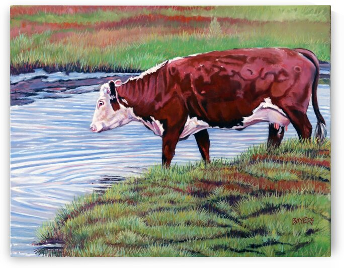 Cow Drinking from a Creek by Rick Bayers