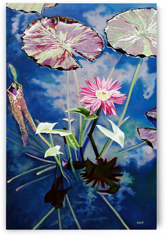 Lily Pads and Pink Flower with Cloud Reflections by Rick Bayers