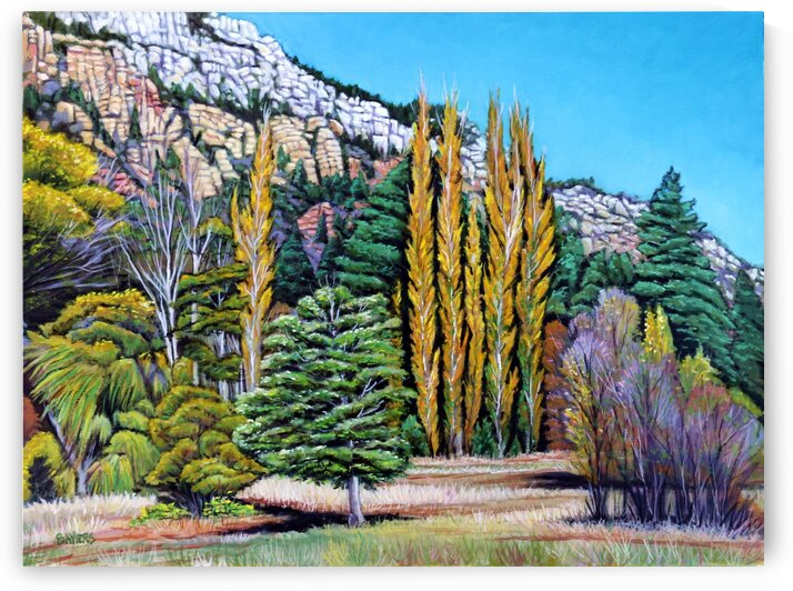 Tall Yellow Trees in New Mexico by Rick Bayers